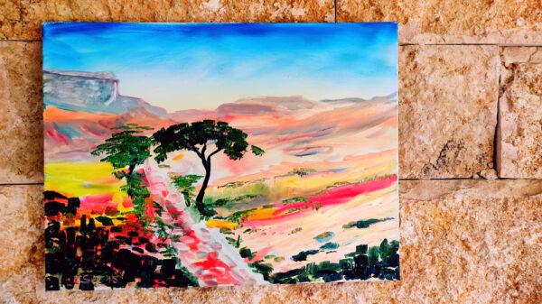 Akazei in der Wüste Negev