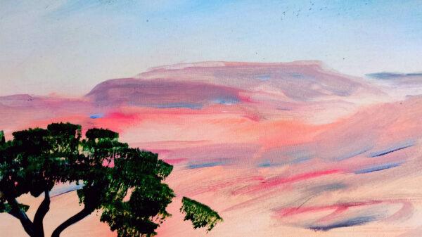 Akazienbaum in der Wüste Negev/ Israel am Shvil Israel