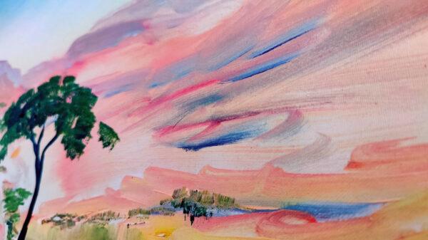 Wüste Negev, Akazienbaum